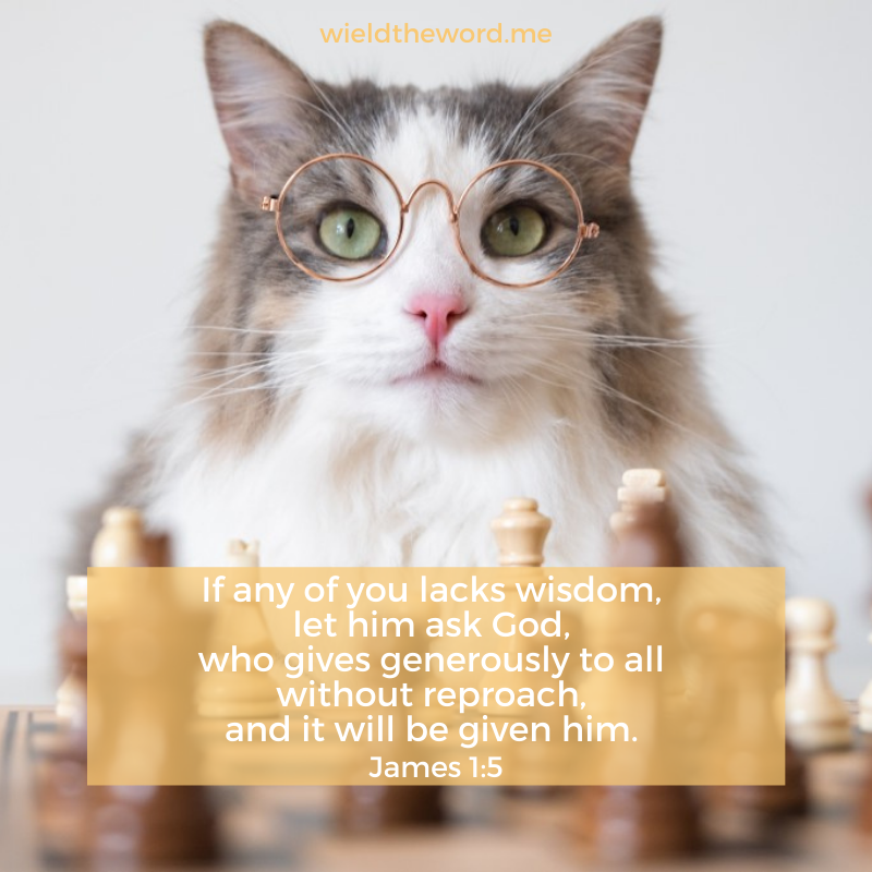 if-any-of-you-lacks-wisdom-let-him-ask-god-who-gives-generously-to-all-without-reproach-and-it-will-be-given-to-him-james-1-5